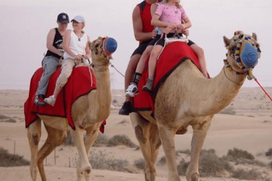 Camel ride Desert Safari with family