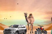 Cheap Desert Safari Dubai Tour