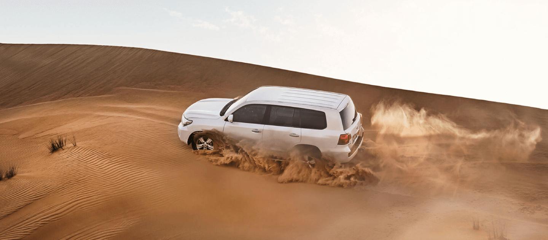VIP Desert Safari Dubai 2020 Tour