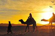Best Camel Ride Desert Safari - Camel Ride Dubai 1