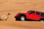 Hummer Desert Safari With Camel ride tour