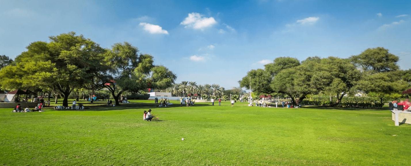 Creek Park Dubai Tickets, Price, Things to do