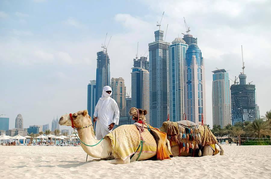 Dubai Landscaper United Arab Emirates